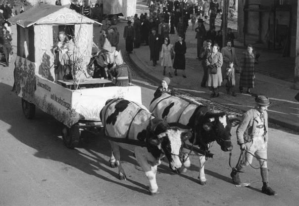 1951 wurden die Umzugswagen noch mit Pferden und Kühen gezogen.