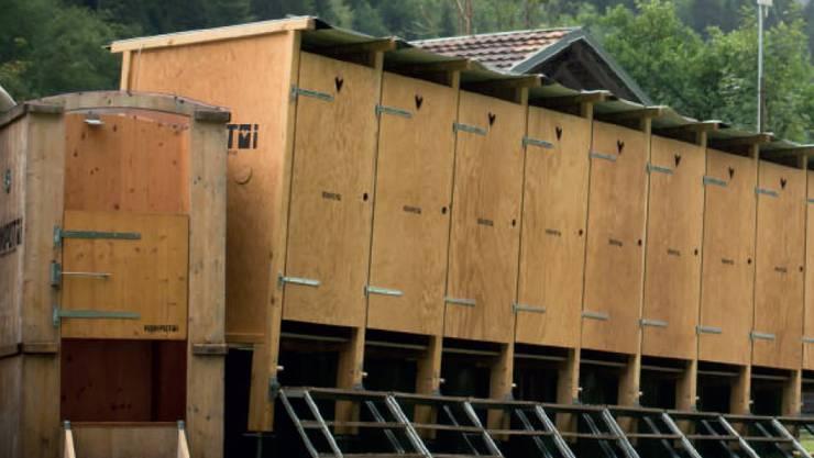 Die Toiletten-Häuschen von Kompotoi: Dank Ausscheidungen zu einer besseren Umwelt.