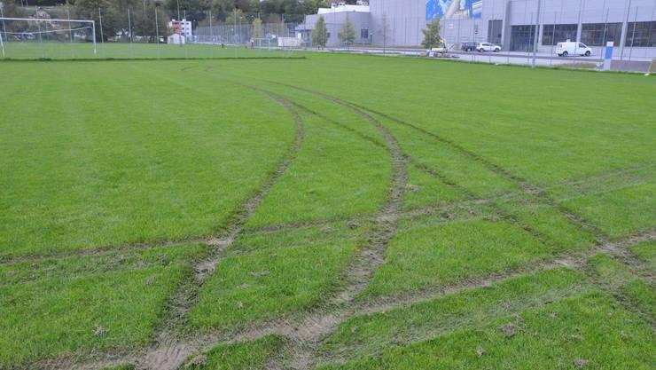 Auf dem Rasen sind die Spuren deutlich zu sehen.