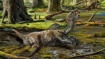 So könnte der Todeskampf von Tongtianlong limosus ausgesehen haben. Sein Fossil wurde in ungewöhnlicher Stellung gefunden: platt auf dem Bauch, alle Viere von sich gestreckt und mit erhobenem Kopf. (Illustration)