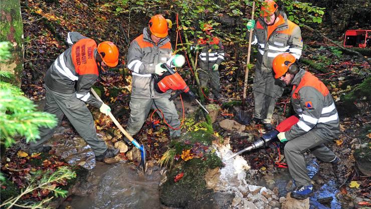 Die WK-Teilnehmer zeigten Einsatzfreude an der Übungsarbeit im nassen und abschüssigen Gelände.