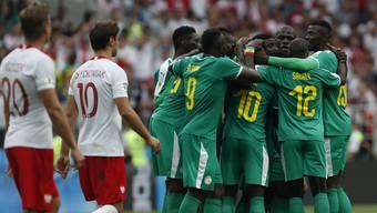 Impressionen zum Gruppenspiel Polen - Senegal