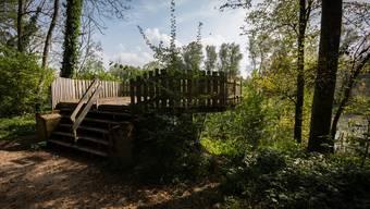 Sorgt seit Jahren für Kritik: Die Plattform, die eine bessere Sicht auf den Auenpark Rupperswil-Auenstein ermöglichen soll.