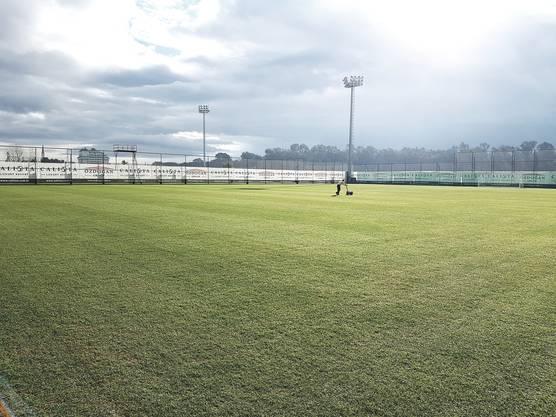 Der FCA-Trainingsplatz am Dienstag - die Sonne scheint
