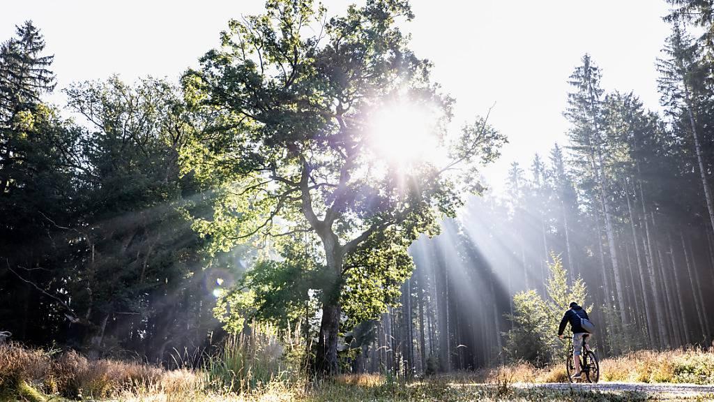 Schweiz wärmer und Mittelland sonniger bei gleichem Niederschlag
