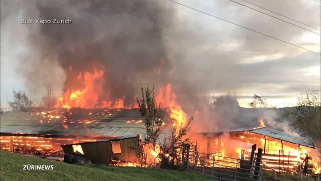 100'000 Franken Schaden durch Scheunenbrand