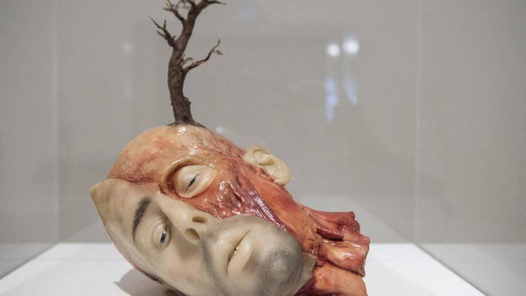 """Sicht auf das Werk """"Thinking About It"""" von John Isaacs in der Ausstellung """"About Trees"""" im Zentrum Paul Klee in Bern."""