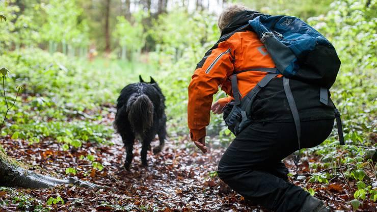 Training Vermisstensuche im Wald