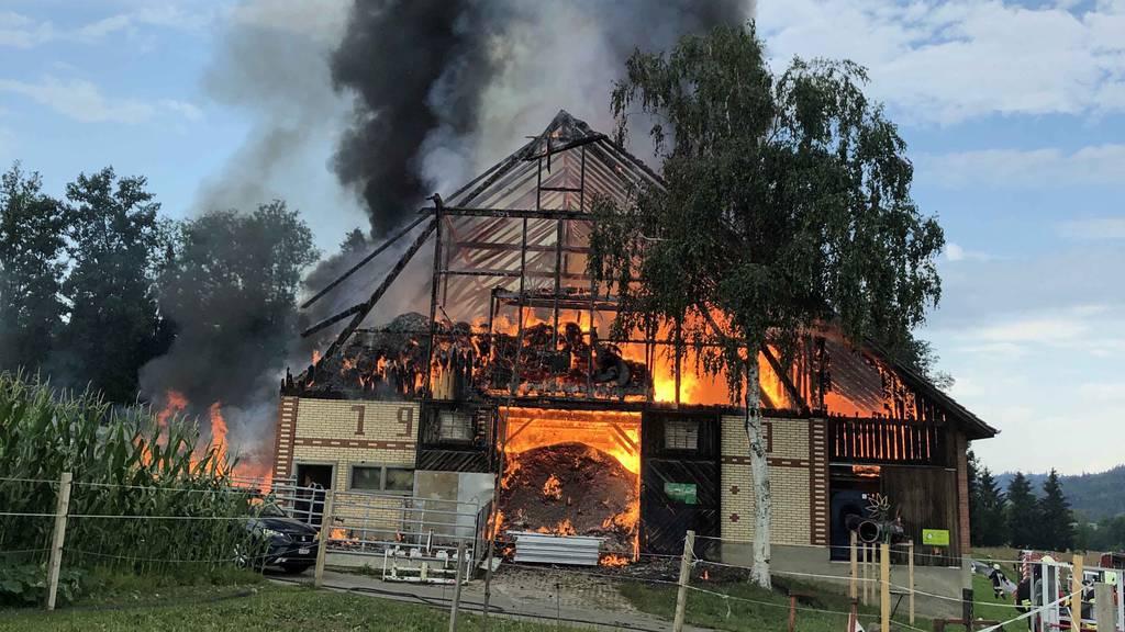 Das war der Grund für den Scheunenbrand in Triengen