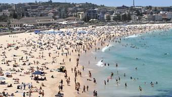Australien steuert mit einer Rekord-Hitzewelle von über 40 Grad Celsius auf Silvester zu. Aber auch in anderen Regionen der Welt setzt extremes Wetter den Menschen zu.