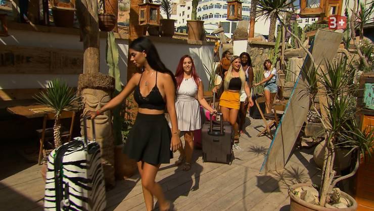Die Kandidatinnen ziehen in ihre neue Villa in Marokko.