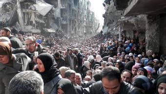 Inmitten des syrischen Bürgerkrieges: Das Flüchtlingslager Jarmuk bei Damaskus