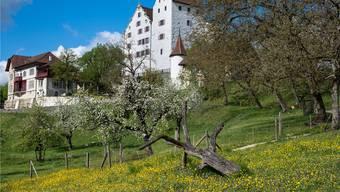 Schloss Wildegg ist diesen Freitag für Besucher normal geöffnet