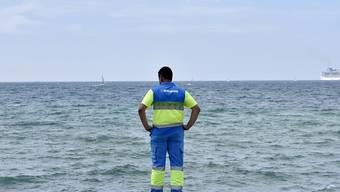 Auf der Suche nach den giftigen Quallen: Ein Räumungsmitarbeiter mustert den Strand bei Molinar, einem Viertel von Mallorcas Hauptstadt Palma.