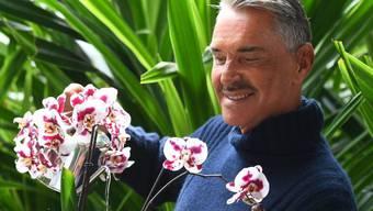 """Der Potsdamer Modedesigner Wolfgang Joop giesst in der Biosphäre in Potsdam eine Orchidee. Der 72-Jährige taufte die Neuzüchtung auf den Namen """"Phalaenopsis Wolfi""""."""