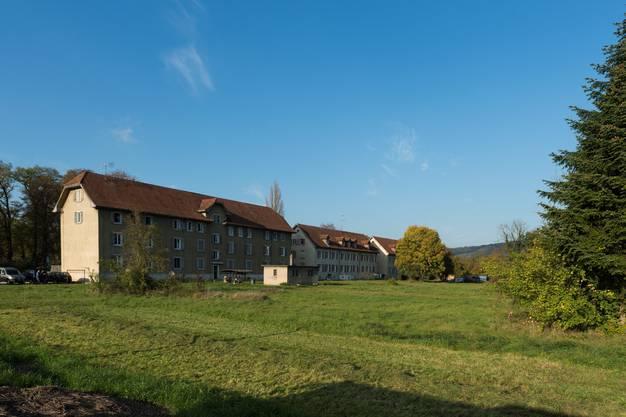 Im November erhöht sich die Zahl der Asylbewerber - der Kanton hat Wohnungen für 50 zusätzliche Personen gemietet.