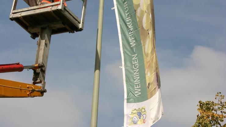 Montiert: Die Fahnen werden in Zukunft jedes Jahr entlang der Weininger Hauptstrasse befestigt und markieren den Start der rund einen Monat dauernden Weinlese. (Bild: ZIM)