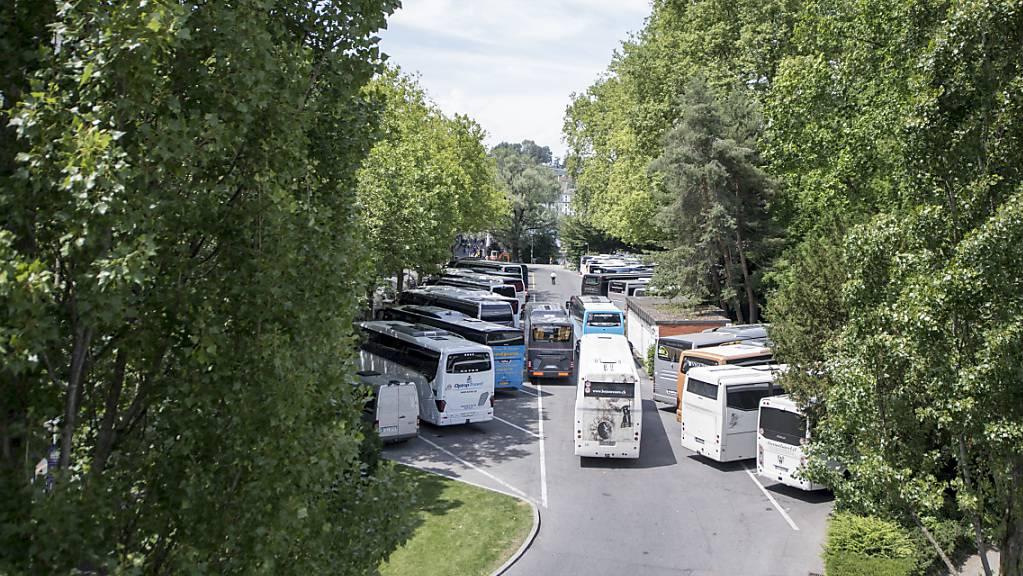 Die Cars müssen vom Inseli am linken Seeufer in der Stadt Luzern verschwinden - die Bäume aber sollen weiterhin eine wichtige Rolle spielen. (Archivbild)