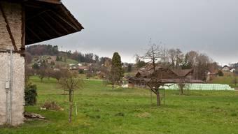 Die Abwasser der Bauernhöfe im Gebiet Wili in Gontenschwil fliessen bis heute in Güllenlöcher