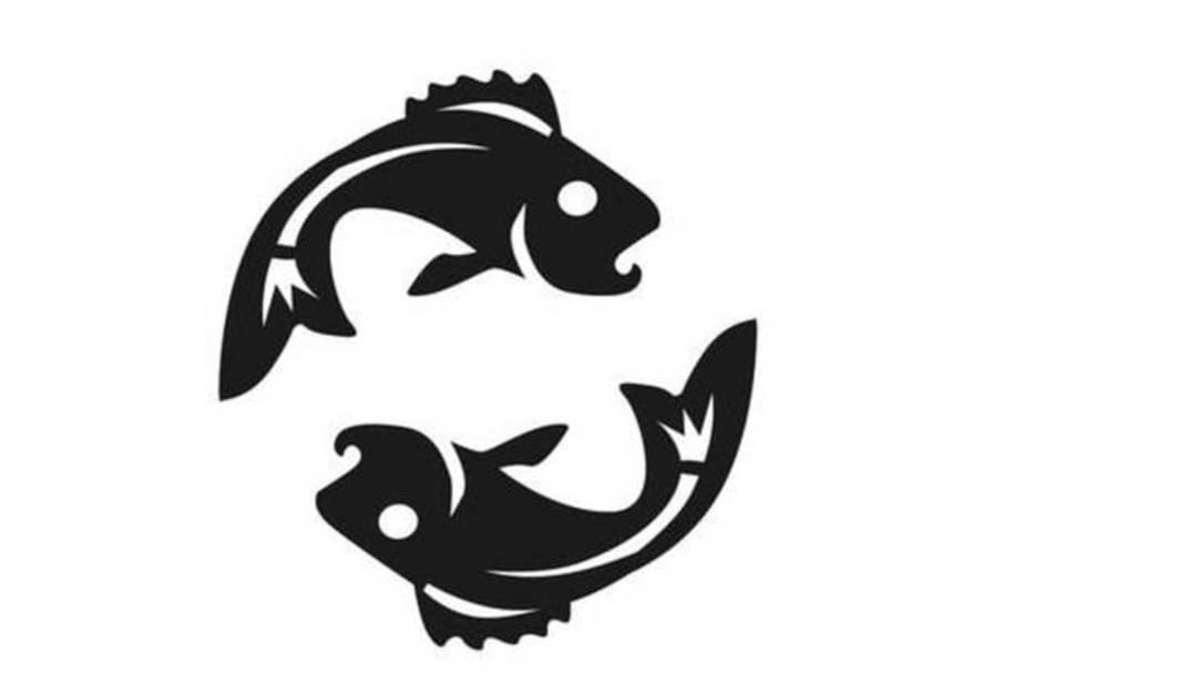 Wasserzeichen: Fische - Die Spirituellen