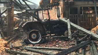 Löscharbeiten: Die Feuerwehren schafften es, ein Übergreifen des Feuers auf Wald und Wiesen zu verhindern.
