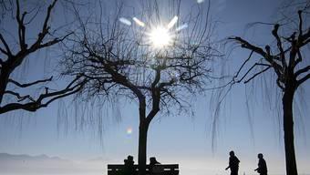 Der diesjährige Winter gab wegen seiner milden Temperaturen und mehrerer Winterstürme zu reden. (Symbolbild)