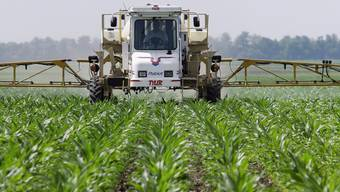 Glyphosat ist das weltweit am meisten eingesetzte Herbizid. In den USA werden jährlich über 100'000 Tonnen verbraucht, vor allem im Soja- und Maisanbau. In der Schweiz sind es schätzungsweise 300 Tonnen (Archiv)
