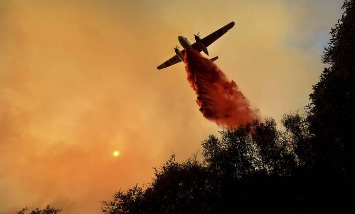 Ein Löschflugzeug über brennenden Wäldern
