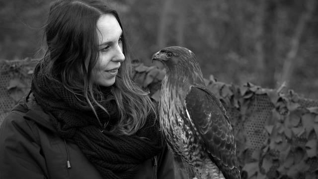 Im Rupperswiler Wald mit Falknerin Annika Bütschi: «Hier ist mein Zufluchtsort»