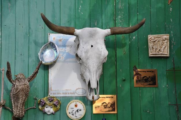 Das Original des Schädels hängt heute im aargauischen Fricktal, bei der Beiständin von Gertrud Brunners Frau.