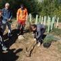 Die Waldtage 2019 in Rünenberg. Hier pflanzen Schüler gerade einen Baum.