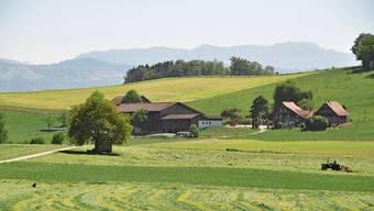 Unmittelbar hinter dem Weiler Hatwil, der an Maschwanden grenzt, soll ein neues Kiesabbaugebiet entstehen. Der Zuger Kantonsrat entscheidet voraussichtlich im September über die dazu notwendige Anpassung des Richtplans.
