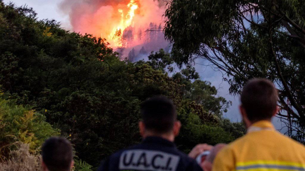 Zahlreiche Menschen mussten nach dem erneuten Ausbruch von Waldbränden auf Gran Canaria evakuiert werden.