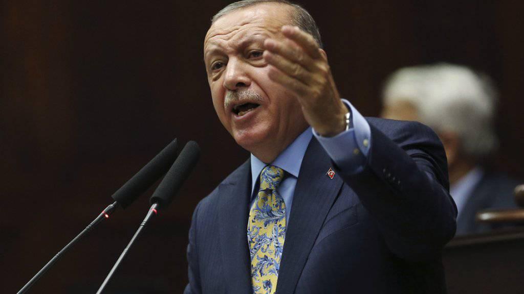 Der türkische Präsident Recep Tayyip Erdogan spricht am Dienstag vor dem Parlament in Ankara.