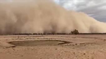Eine riesige Wolke aus Staub zog mit heftigen Windböen über Teile des Bundesstaates New South Wales. Auch in der Hauptstadt spielte das Wetter verrückt: Es fielen Hagelkörner so gross wie Golfbälle.