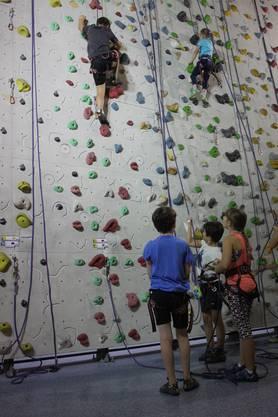 Die jungen Kletterer kraxeln hoch hinaus.
