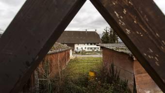 Der Henzihof hat seit dem Sommer einige Veränderungen erfahren, die nun am Samstag besichtigt werden können.