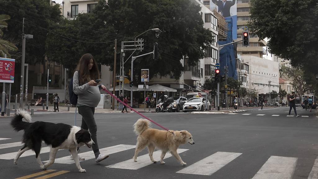Tel Aviv sammelt im Kampf gegen Hundekot DNA-Proben