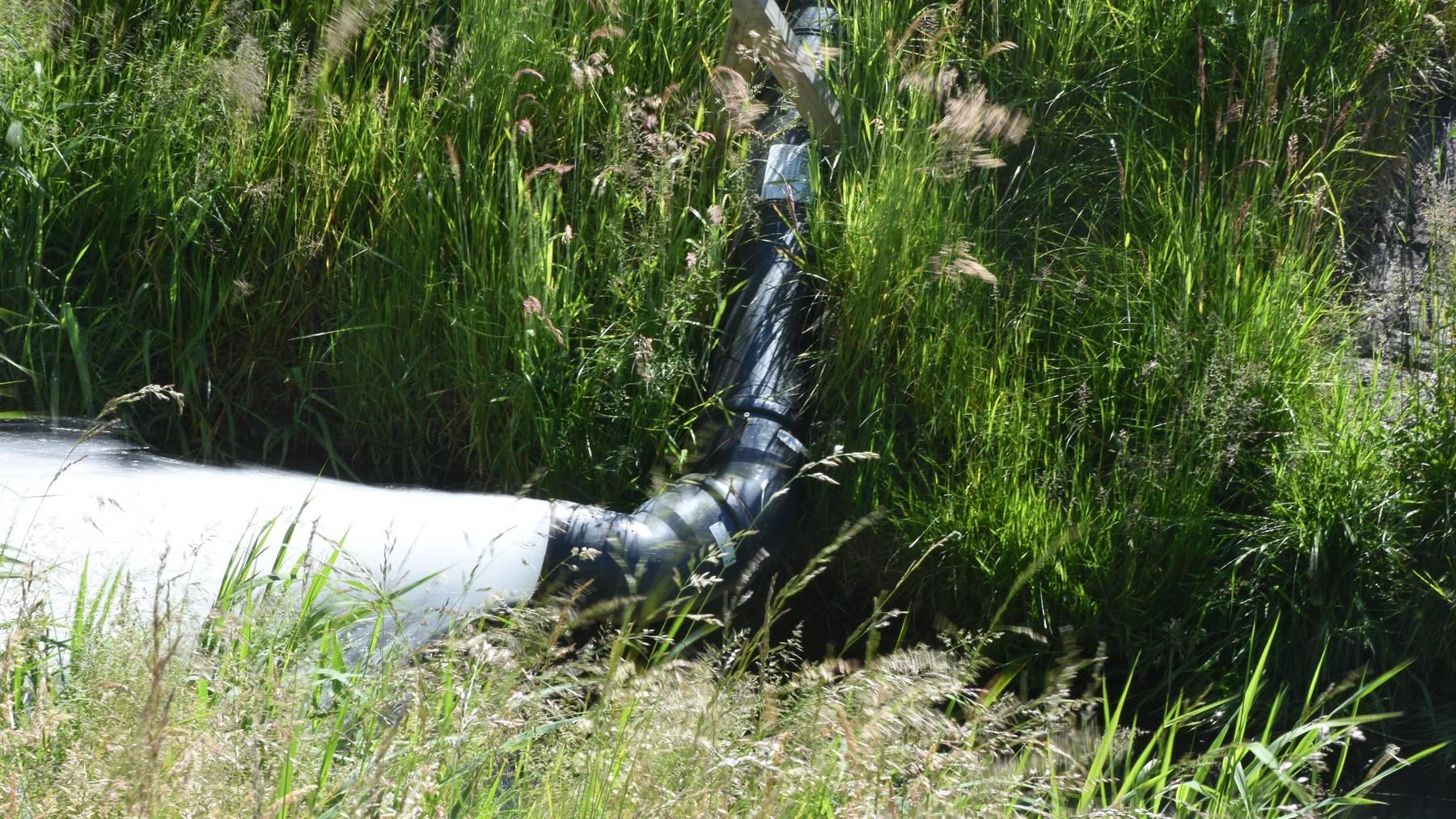 Diepoldsau Grundwasser Gestank
