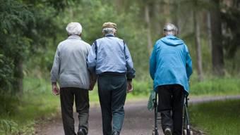 Die Zeitvorsorger können etwa Spaziergänge begleigten (Symbolbild)