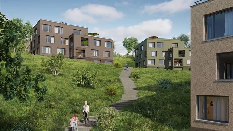 So könnte das Land Rai dereinst aussehen. Heute ist es eine grüne Wiese. In Zukunft soll hier gewohnt werden.