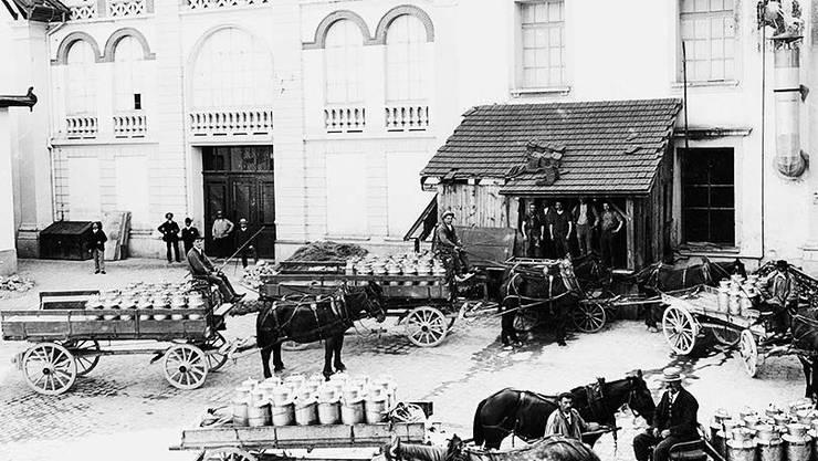 Milchanlieferung zwischen 1900 und 1920