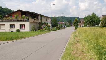 Autofrei: Der Kaister Gemeinderat strebt für die Weidstrasse ein Fahrverbot für den Motorverkehr (ausser Zubringer und Postautos) an.