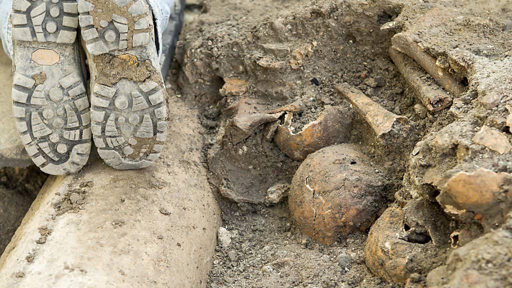 Schädel und Knochen aus einem unter der Strassenpflästerung in Luzern verborgenen Friedhof, der von 1600 bis 1798 in Betrieb war. Freigelegt wurden der Friedhof und die Reste einer Spitalkirche auf dem Franziskanerplatz, weil die Pflästerung neu gestaltet wird.
