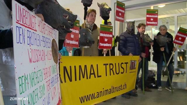 Prozess gegen Wildschwein-Killer