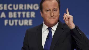 Regierungschef David Cameron während seiner Rede in Birmingham