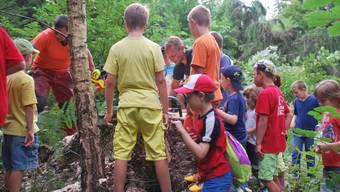Dem Förster im Stöckenwald bei der Arbeit helfen (oben), ein eigenes Spiel basteln (u. links) oder ein Besuch bei der Feuerwehr (u. rechts) – im 24. Ferienpass kamen alle Kinder aus Obergösgen auf ihre Kosten.