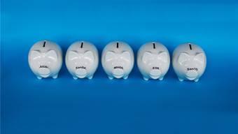 Die letzten fünf kantonalen Sparprogramme mit Namen: Alüb, San04, MH06, E08 und San10. Das nun bevorstehende heisst «Leistungsüberprüfung» und hat noch kein Kürzel. Fotos: Marc Dahinden