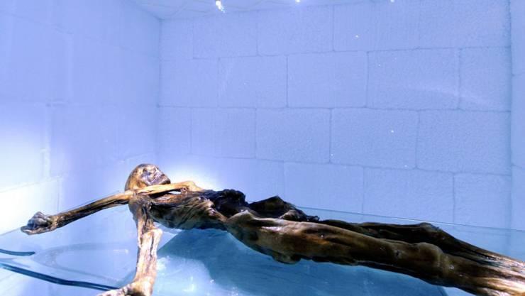 Der Gletschermann Ötzi könnte an Magenschmerzen gelitten haben. Er war mit dem Magenkeim Helicobacter pylori infiziert. (Archiv)