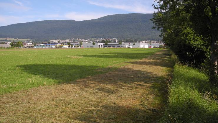 Dieses Land hat die Stadt Grenchen kürzlich gekauft. Die Gemeindeversammlung trat auf einen Kredit für weitere Landkäufe ein.